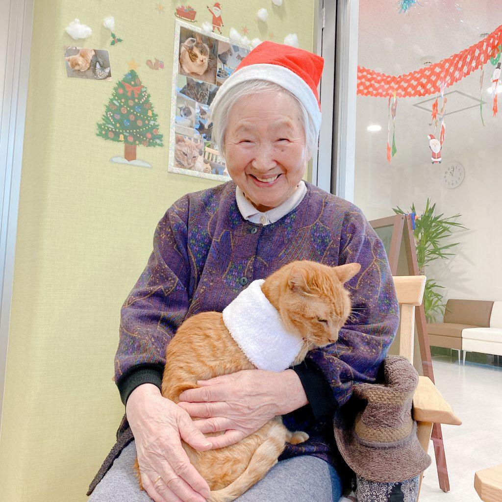 ねこ日記 クリスマスイブ!